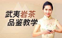 玩转中国茶『武夷岩茶系统课』