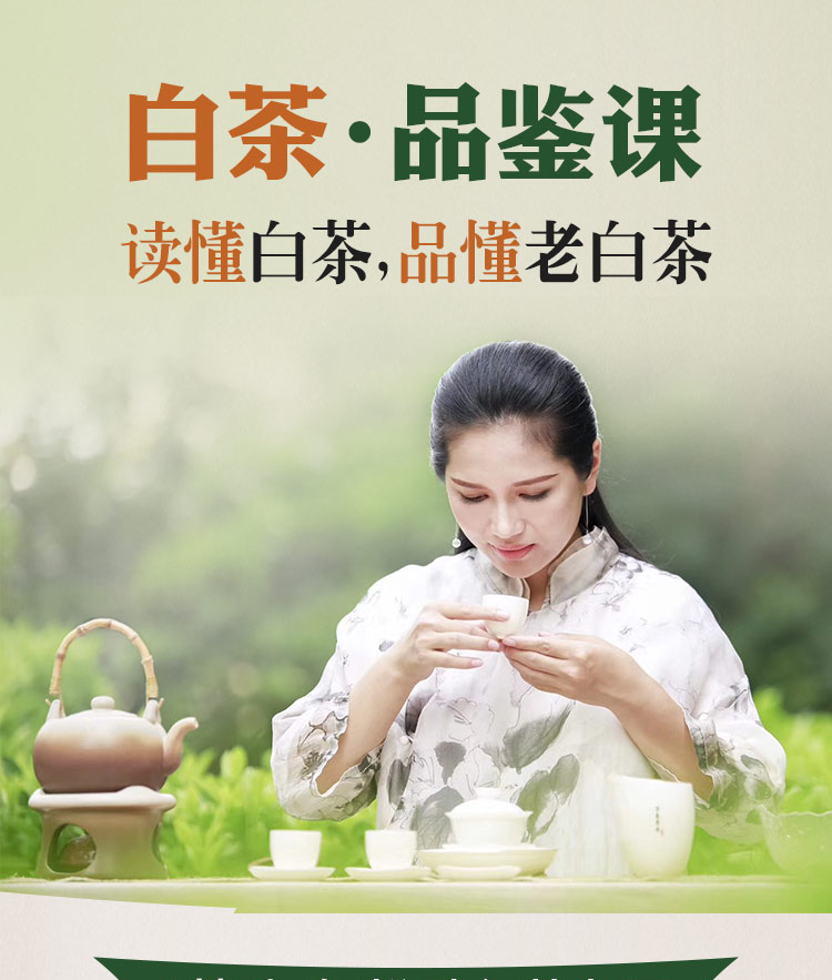 白茶课程介绍页_01