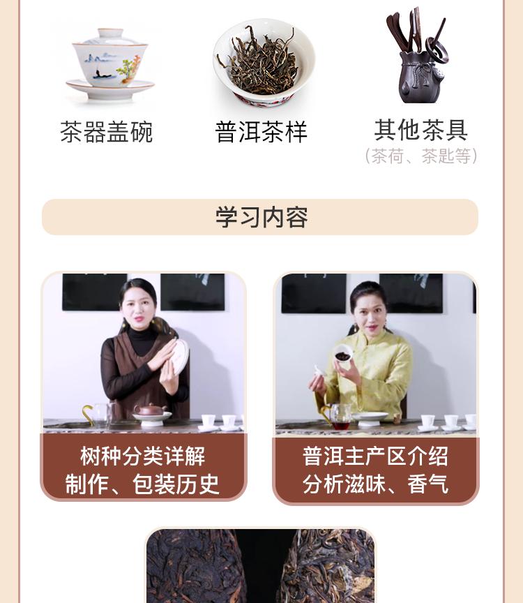 普洱茶茶艺课程-林燕玲_03