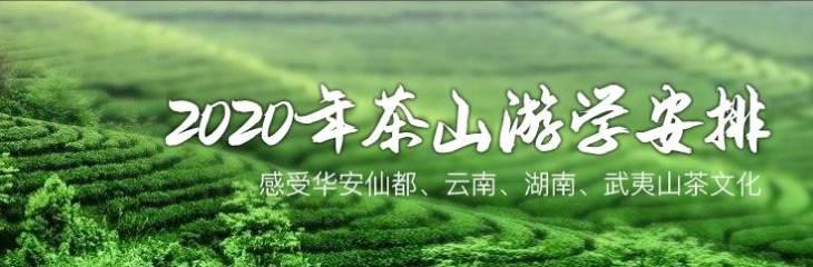 茶山游学班