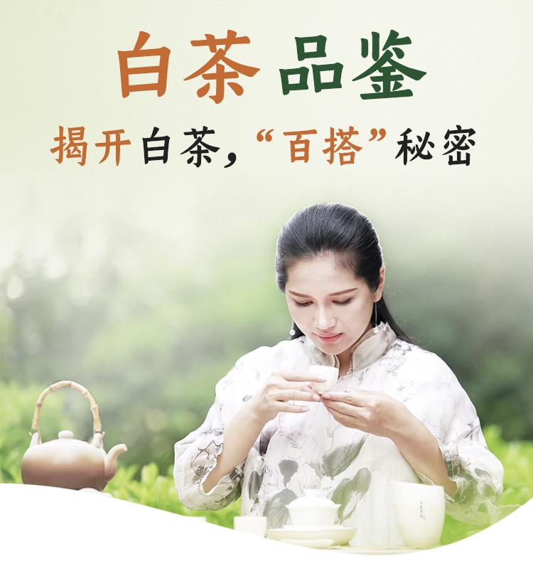 白茶优化_01
