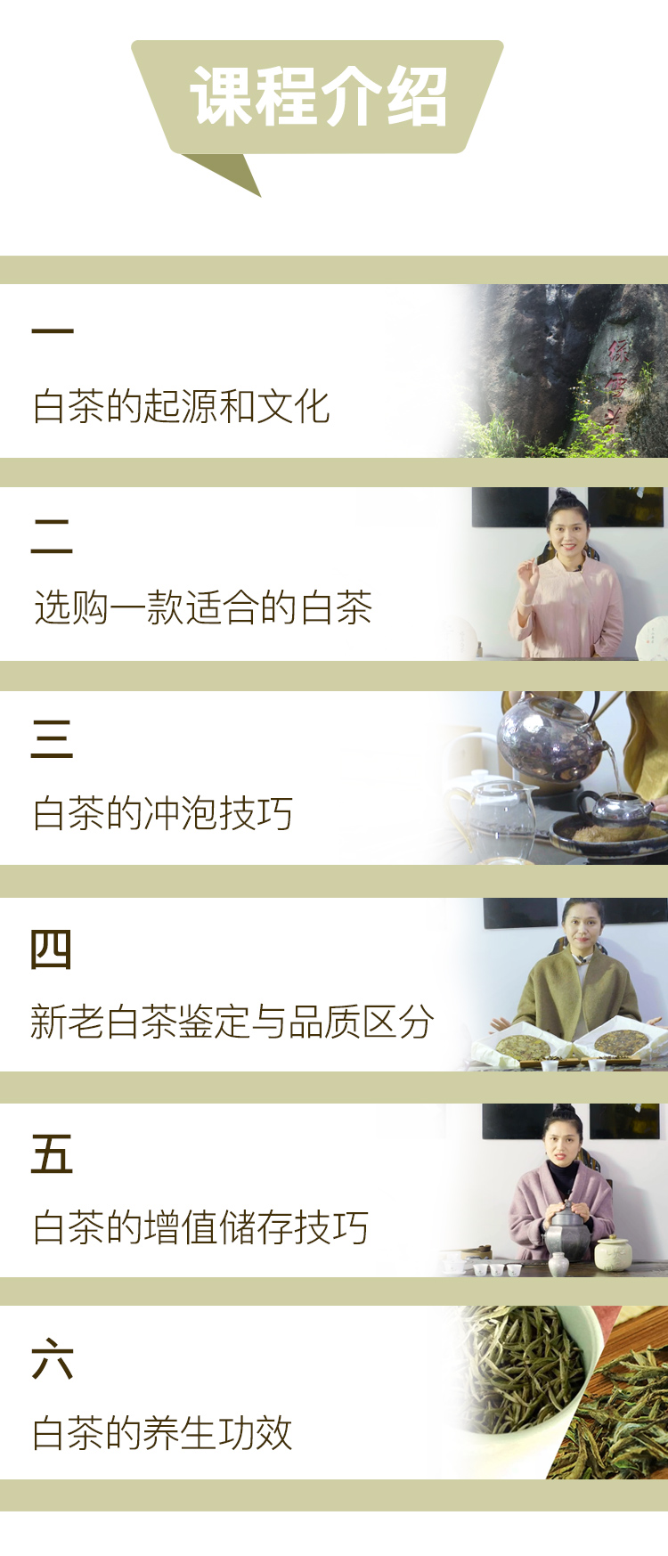 白茶优化_05