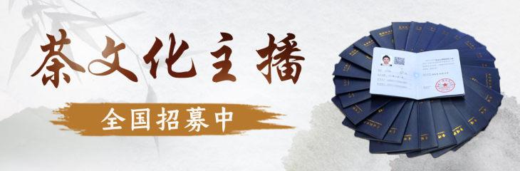 【茶文化主播】线上培训,国家发证!