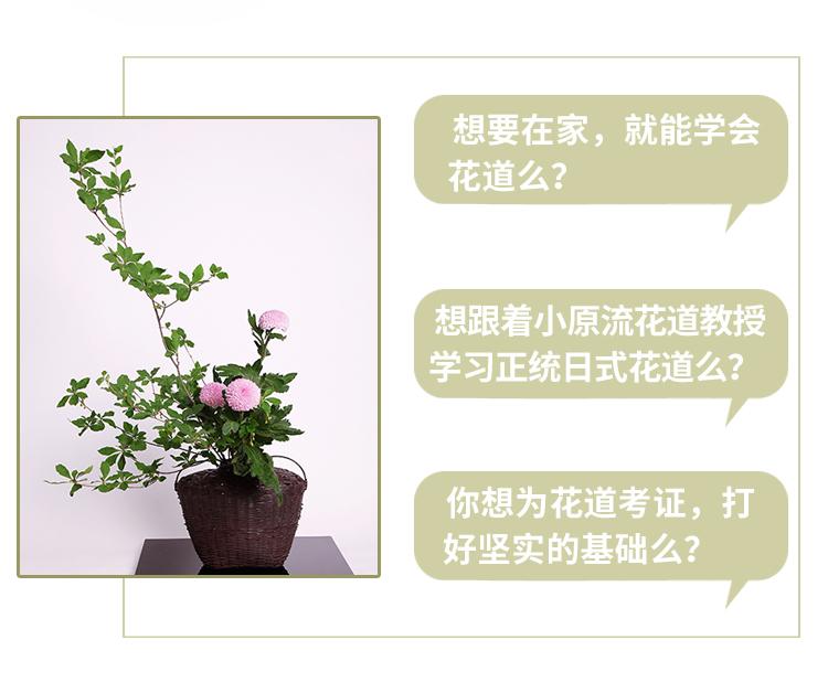 覃晓兰-优化_02