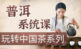 玩转中国茶『普洱茶系统课』