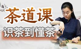12节茶人修习课,从识茶到懂茶