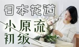 日式花道小原流自由花初级课 让你轻松get插花技法
