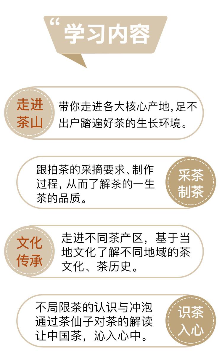 茶仙子_03