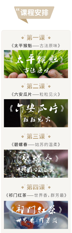 茶仙子_05