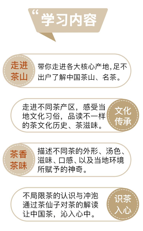 茶仙子音频_03