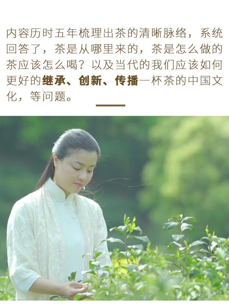 茶仙子音频_09