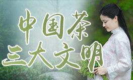 探寻中国茶三大文明『自然·技艺·演绎』