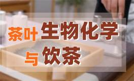 """【茶叶生物化学与饮茶】深入了解茶内质,做个""""茶专家""""!"""