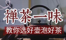 『禅茶一味』识茶学茶,做一个受欢迎的懂茶人