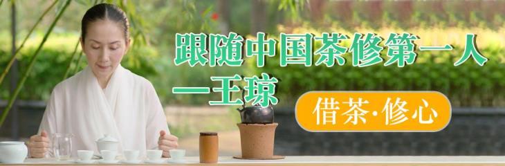 泡好/喝懂一杯中国茶