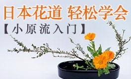 【最美恰是初见】小原流入门课,轻松学会日本花道