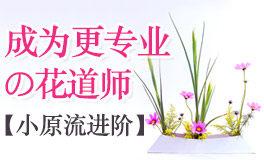 【再见依然】小原流进阶课,成为更专业的花道师
