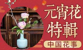『元宵花·元宵特辑』中国传统插花赏析