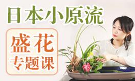 『小原流盛花课』在盘中绽放花道之美