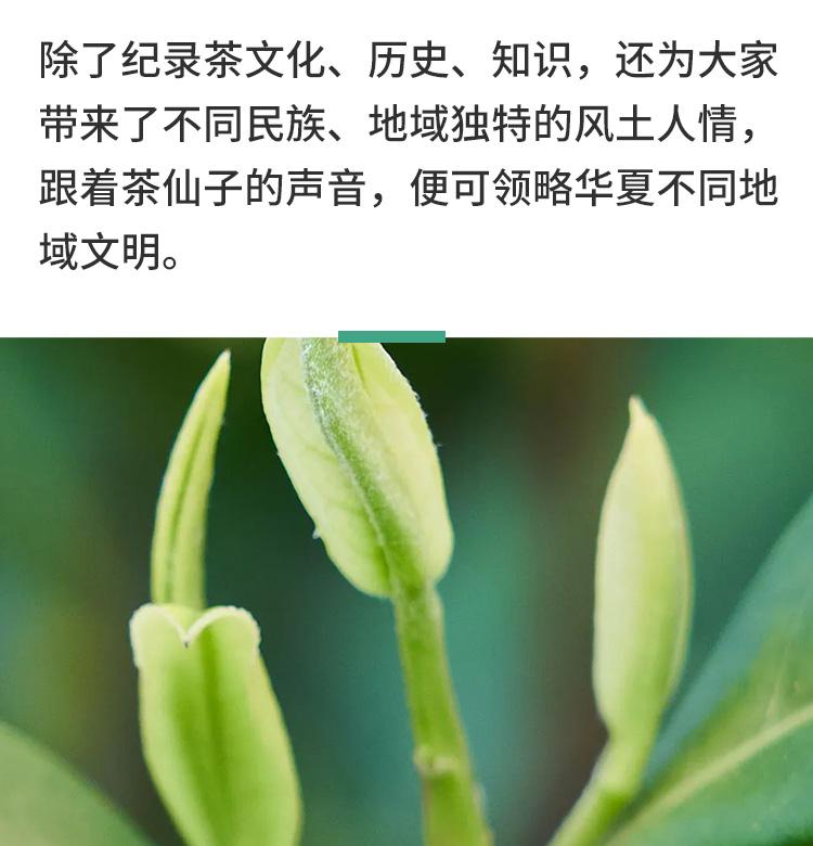 06老师介绍_14