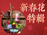 『新春年花·岁朝特辑』中国传统插花赏析