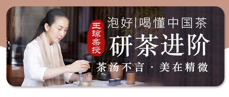 【王琼亲授】研茶进阶,泡好喝懂中国茶(茶汤不言·美在精微)