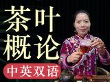 『茶学硕士的中英双语微课·茶叶概论』每天5分钟,让世界听懂中国茶!